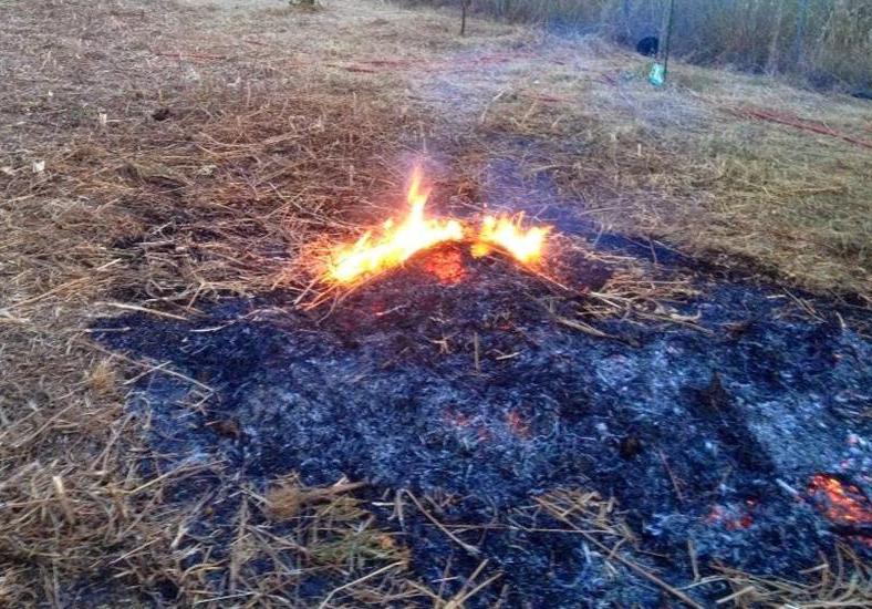 Proroga periodo di elevato pericolo di incendio