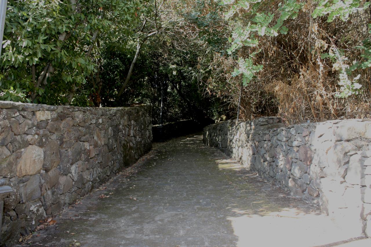 immagine 4 galleria